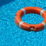 Can Ferrets Swim or Will They Drown?